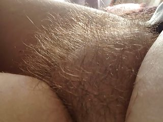my wifes untaimed hairy pussy.